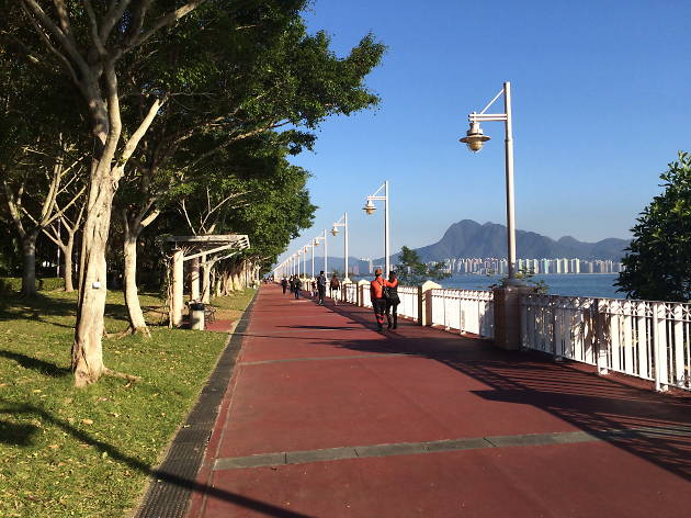 Cycling in Tai Po Waterfront Park Promenade