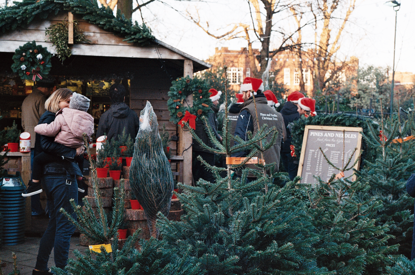 Where To Buy Christmas Trees in London | Best Christmas Tree Shops