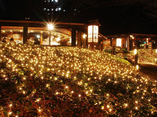 Hotel New Otani Japanese Garden Illumination