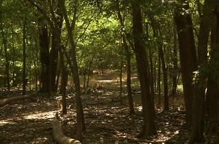 Circle Acres Nature Preserve