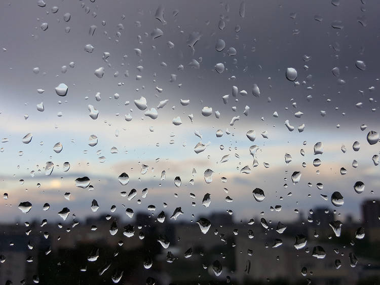 As canções essenciais para dias de chuva