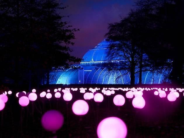 Christmas at Kew 2017