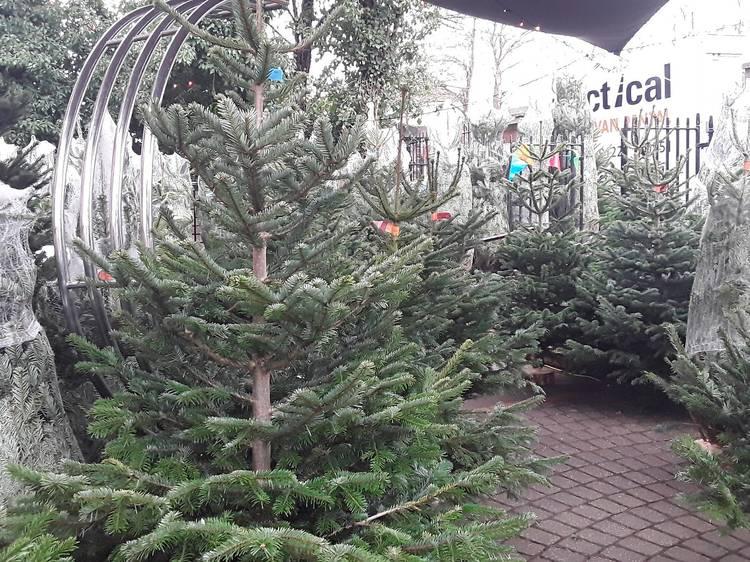 Clickmas Trees