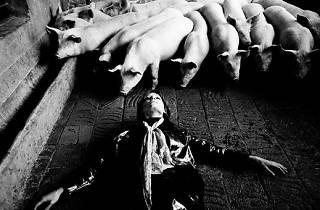 1970 Romy en 'Metamorfosis