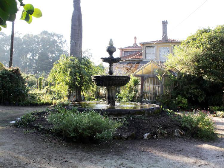Faça uma visita guiada à Casa e Quinta de Villar d'Allen