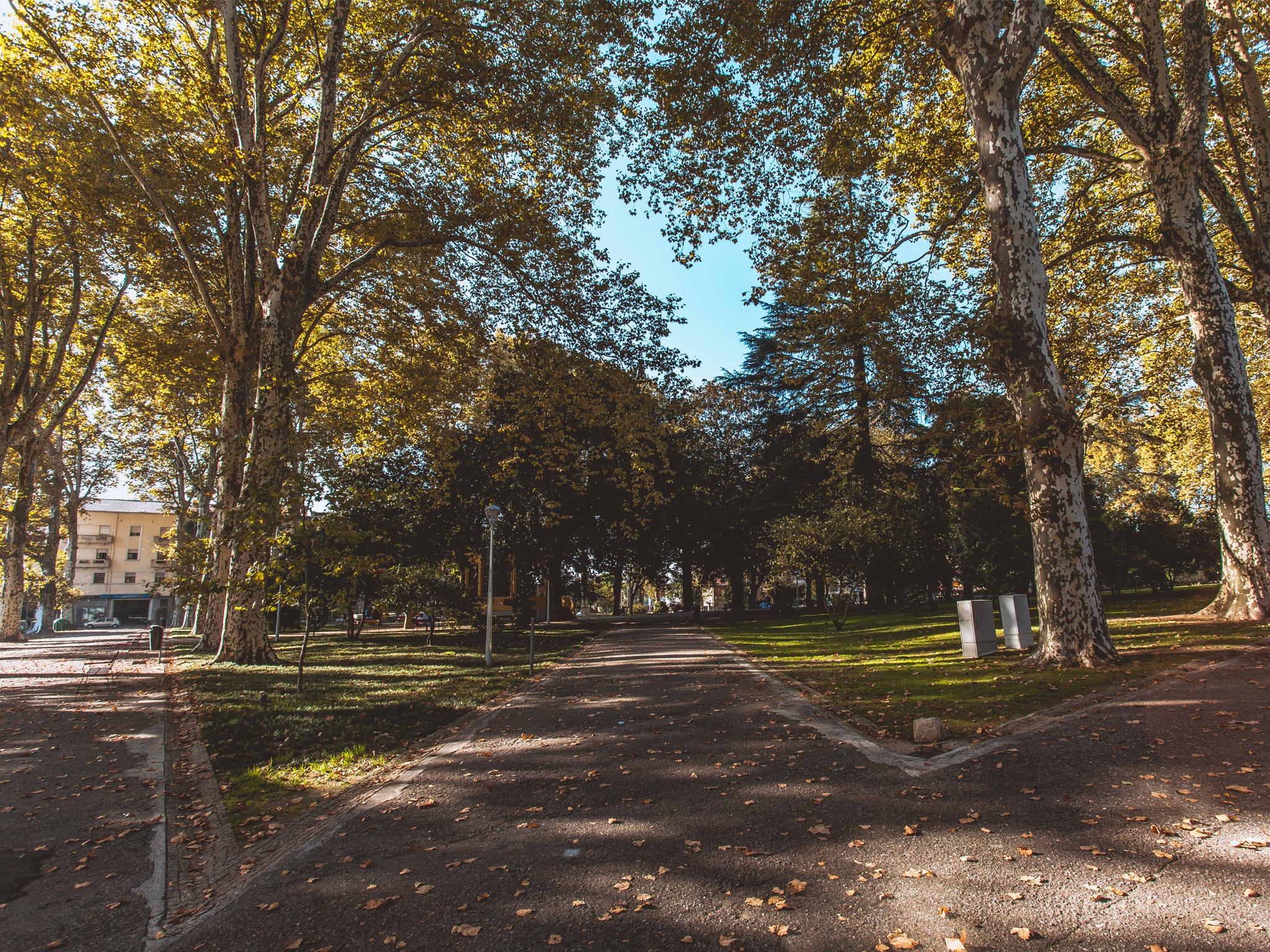 Equipamentos desportivos já estão a ser instalados em 18 espaços verdes do Porto
