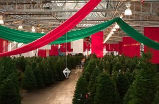 The Guardsmen Christmas Tree Lot