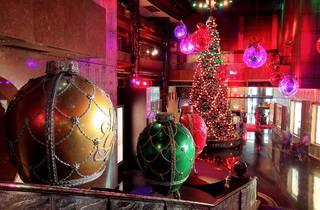 Huge Christmas tree with lights at Crown