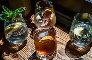 Summer Gin and Tonic Bar