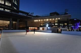 Futako Tamagawa Rise Skate Garden