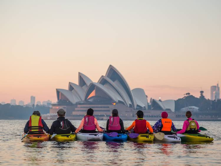 Paddle out on a kayaking tour of the Harbour
