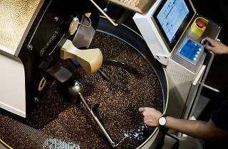 the coffee academics roastery lab