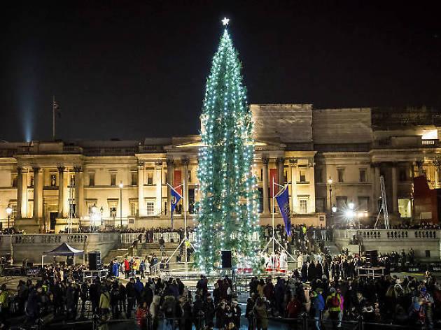 Christmas at Trafalgar Square - Watch The Trafalgar Square Christmas Tree Light Up This Thursday