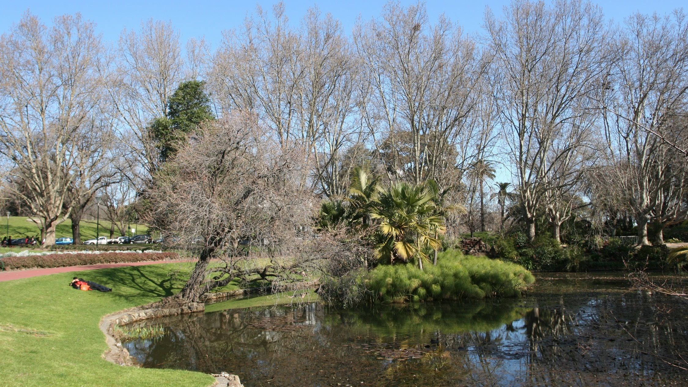 at Alexandra Park Melbourne