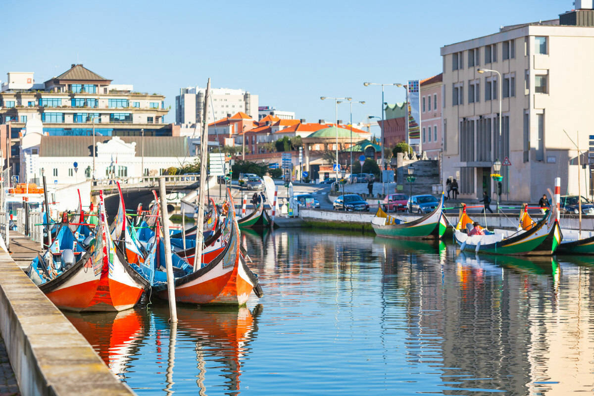 Aveiro tour and moliceiro cruise