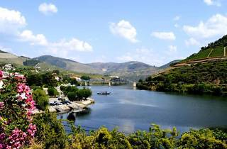 Porto tours- Douro Valley
