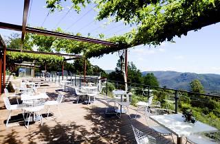 The Potager Mt Tomah terrace