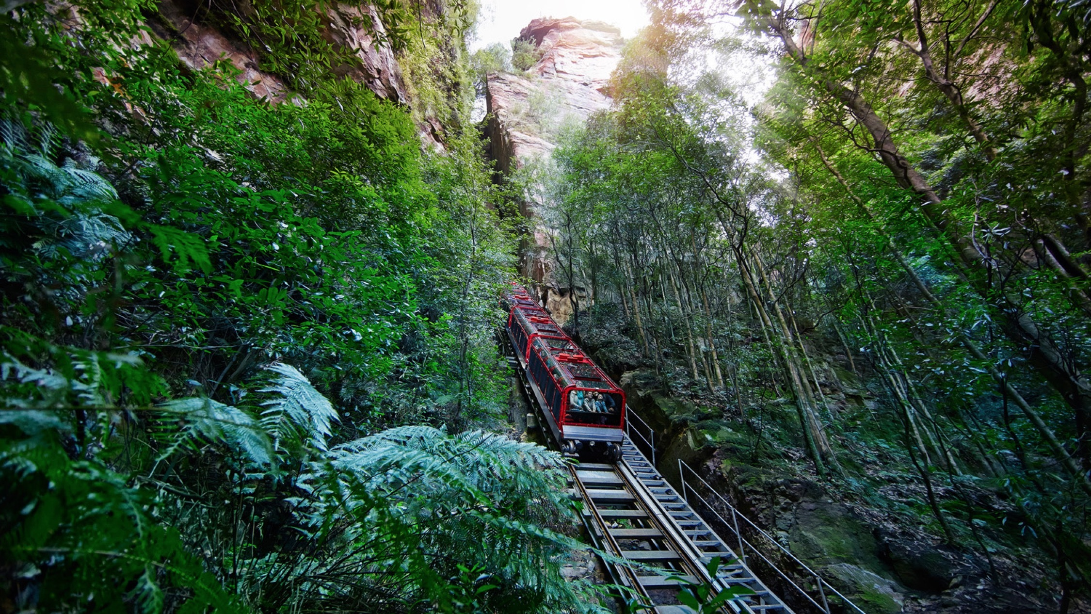 Down the hill at Scenic World