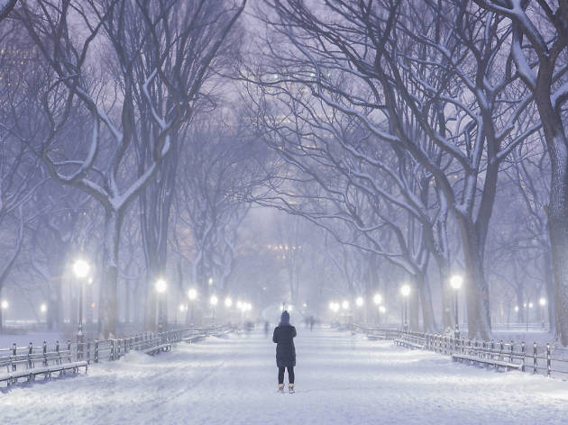 Nyc Is Expecting Up To Four Inches Of Snow This Weekend