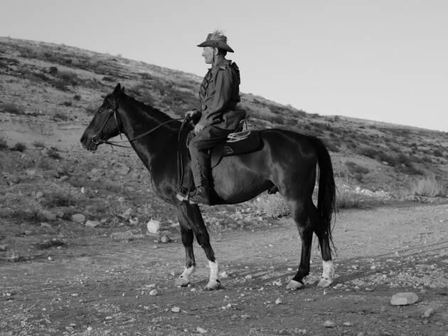 Shaun Gladwell: 1,000 Horses