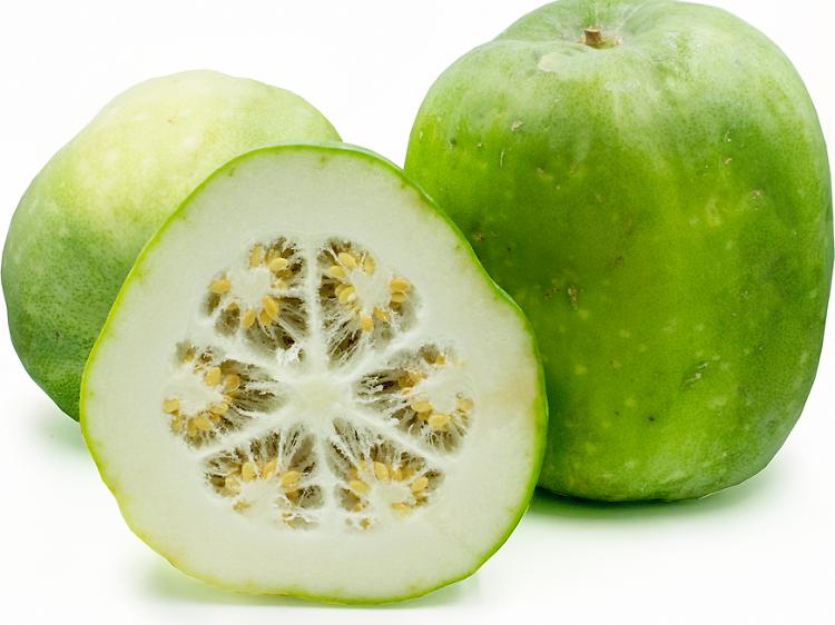 6. 冬瓜 winter melon