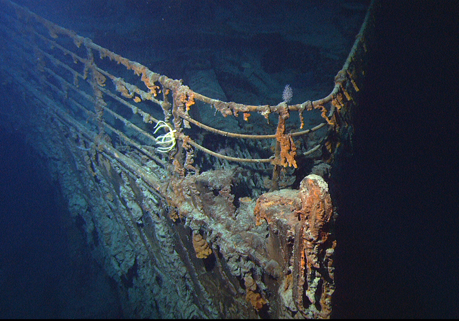 Search for shipwrecks