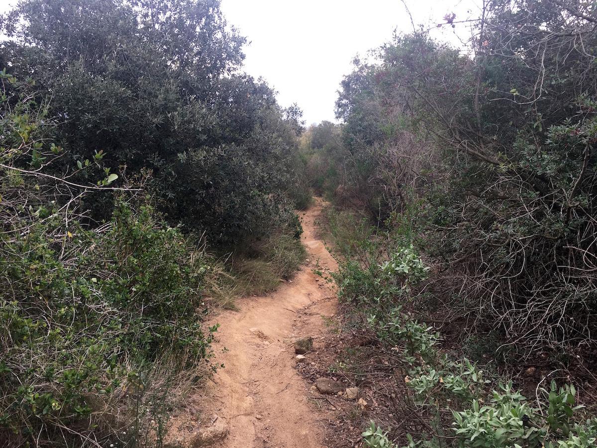 Ruta Serralada Marina