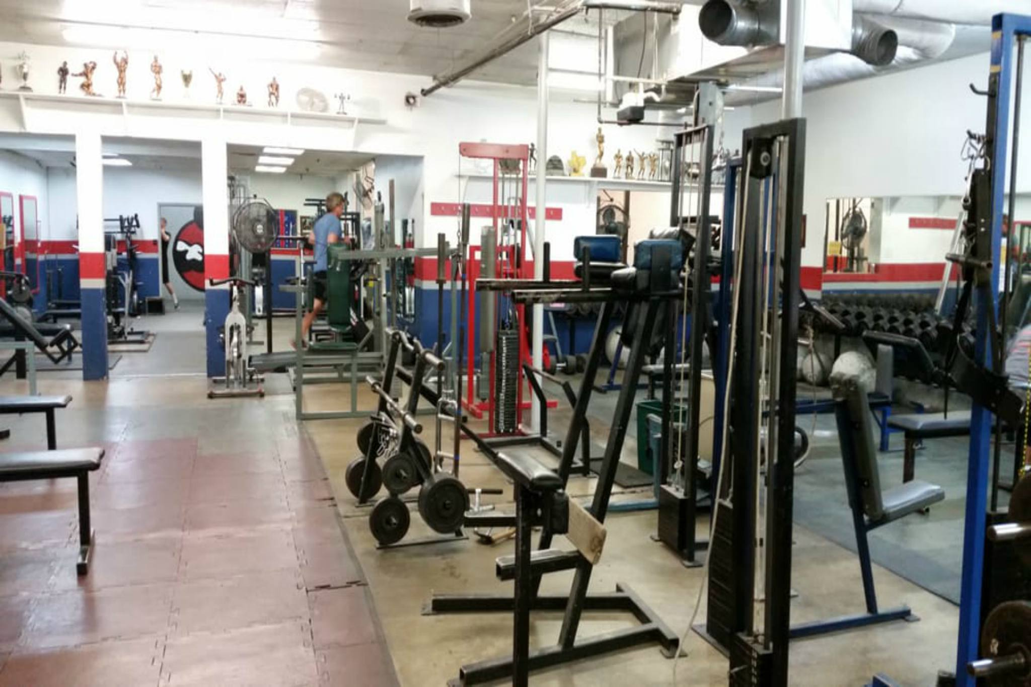 Austin gyms to help get you back in shape