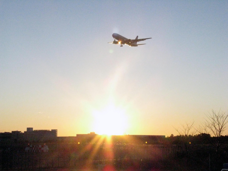 航空科学博物館 1番機と初日の出をみよう