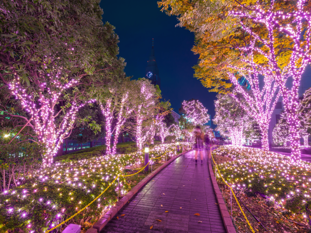 Illumination shows in Tokyo | Time Out Tokyo
