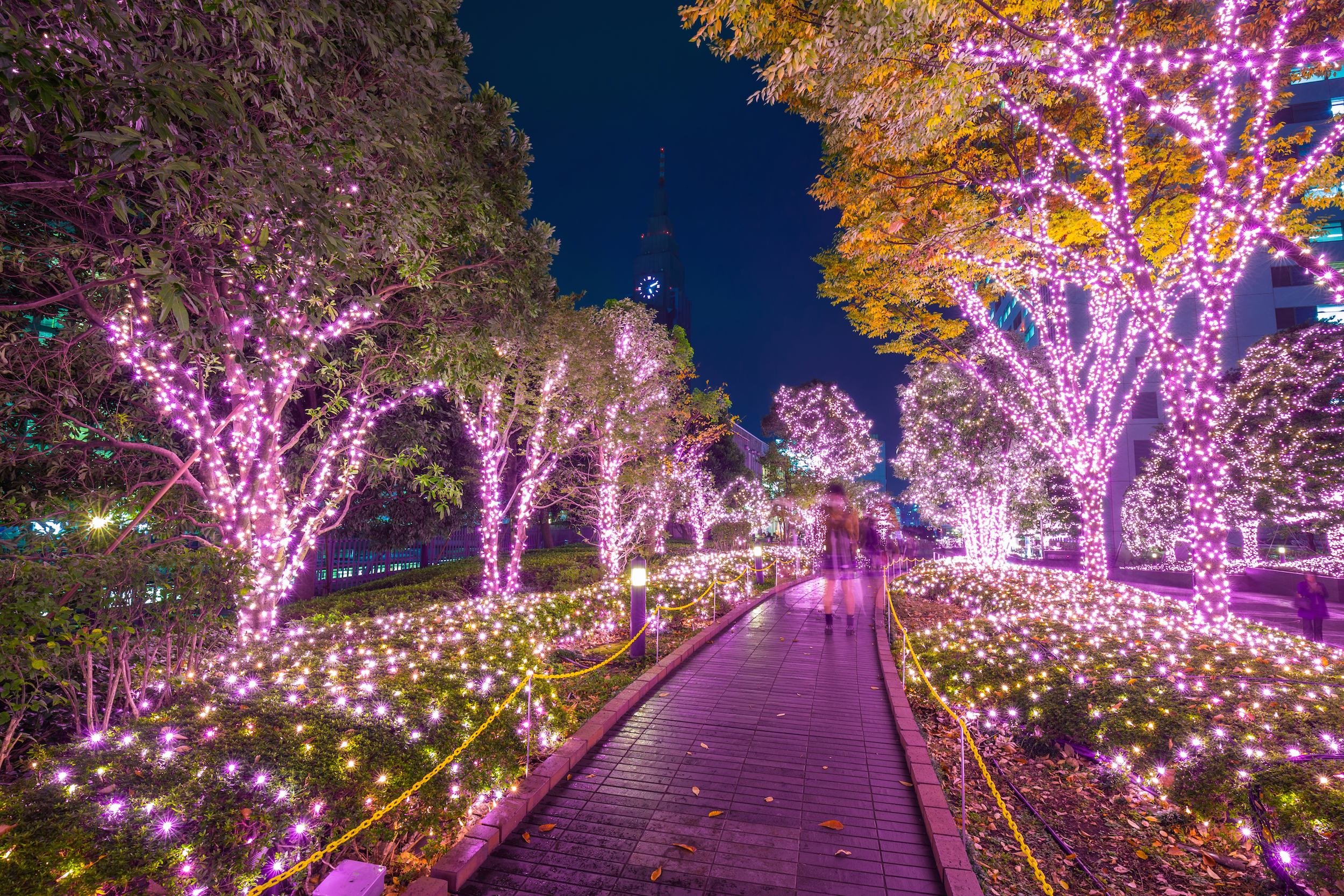 Incredible Winter Light Displays In Tokyo Time Out Tokyo