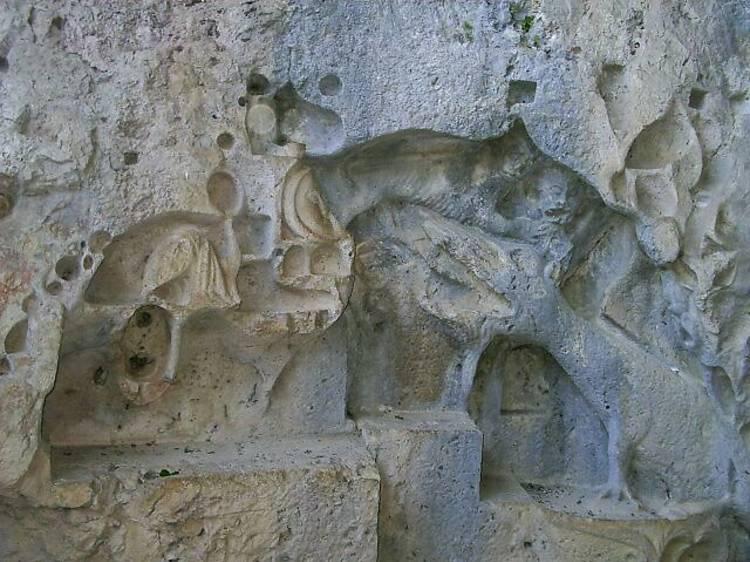 Discover the Murvica dragon