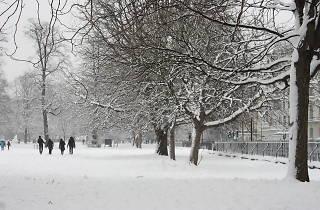 Kensington Gardens in the snow