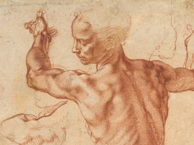 Michelangelo, Studies for the Libyan Sibyl, ca. 1510–11
