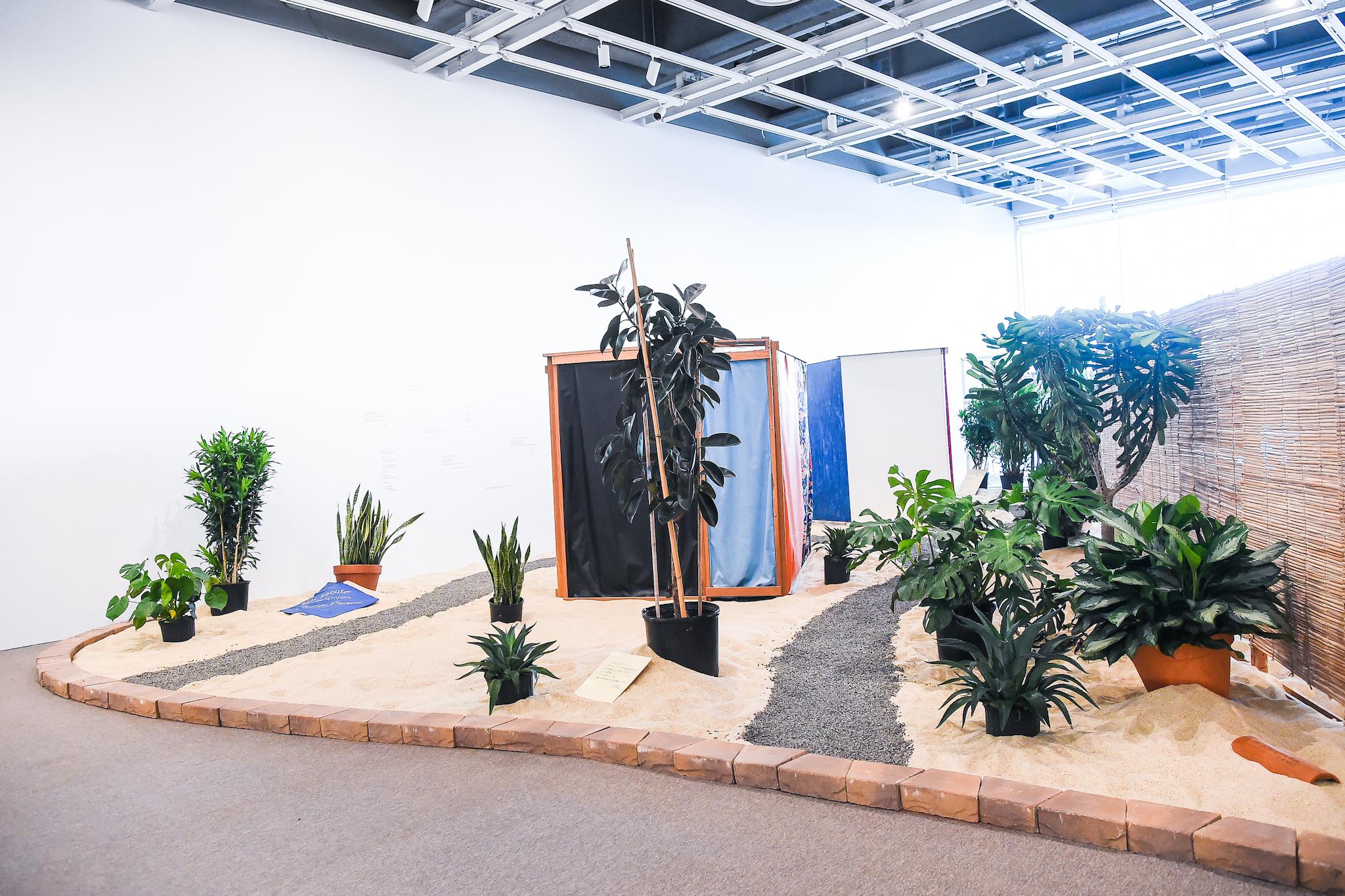 "Installation view of ""Hélio Oiticica: To Organize Delirium"""