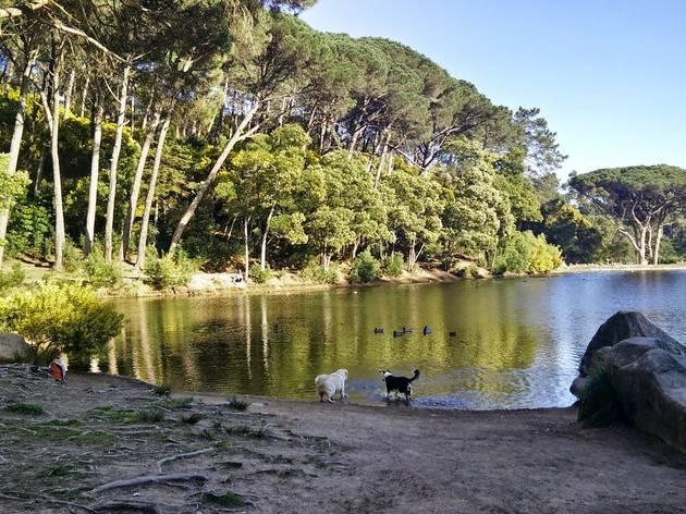 lagoa azul sintra
