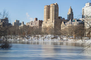 51 awesome things to do in NYC in January