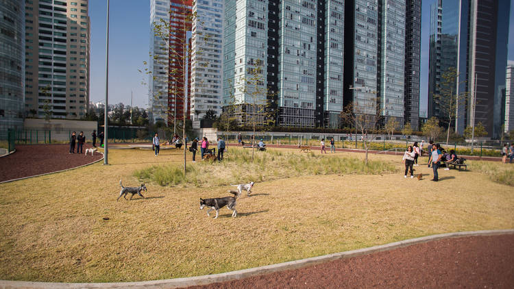 Parque La Mexicana
