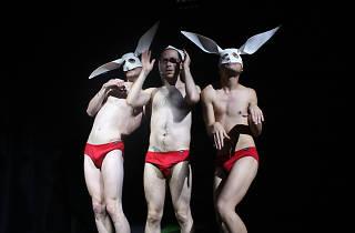 Teatro gay, teatro lgbt, teatro queer, cdmx