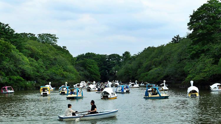 Inokashira Park | Time Out Tokyo