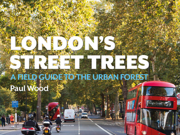 Explore the Urban Forest: Peckham with Paul Wood