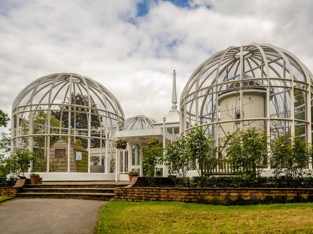 Visit Edgbaston's Botanical Gardens