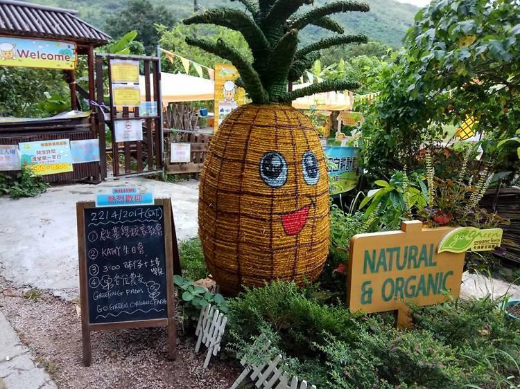 Go Green Organic Farm