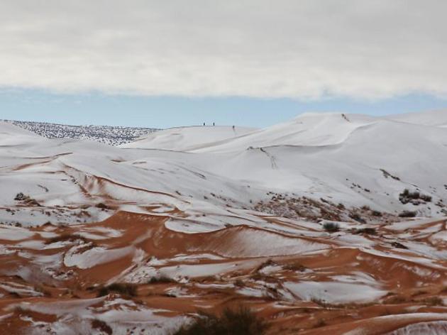 Las espectaculares imágenes del Sahara nevado [FOTOS]