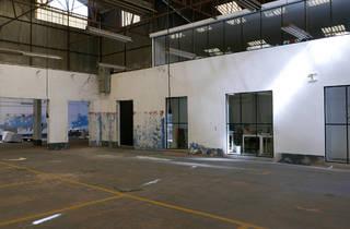 Tomaz Hipólito Studio