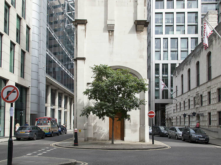 The Wood Street nettle tree