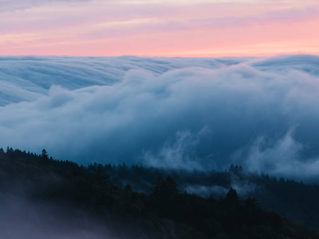 Fog on Mt Tam