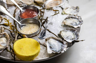 Oysters on the half shell (Photograph: Jakob N. Layman)