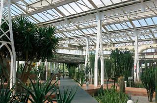 Invernadero del Palacio de Cristal de Arganzuela