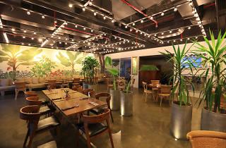 Botanik Bistro & Bar